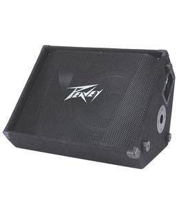 PEAVEY PV15M 500 Watt Floor Monitor